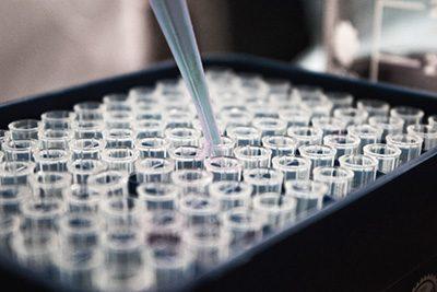 immunology-item-201217-2